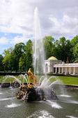 Fountains in Petergof park. Fountains Samson — Stock Photo