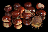 Chestnuts on black background — Stock Photo