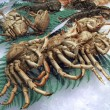 Crustaceans — Stock Photo