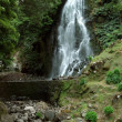 Waterfall at Sao Miguel Island - Stock Photo