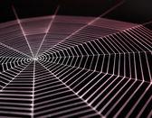 Painted cobweb — Stock Photo