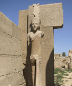 Statue around Precinct of Amun-Re — Stock Photo
