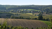 Agricultural view around Emmendingen — Stock Photo