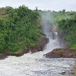 Murchison Falls in Africa — Stock Photo