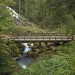 Wooden bridge around Triberg Waterfalls — Stock Photo