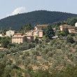 Chianti in Tuscany — Stock Photo #7139995