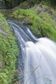 Triberg Waterfalls detail — Stock Photo