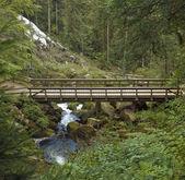 Wooden bridge around Triberg Waterfalls — Stock Photo
