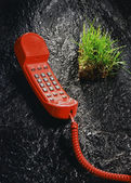 Red phone and grass sode — Stock Photo