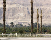 Around the Mortuary Temple of Hatshepsut — Stock Photo