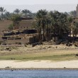 Waterside Nile scenery in Egypt — Stock Photo #7182474