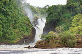 Murchison Falls — Stockfoto