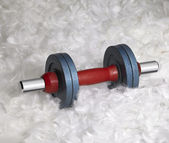 Dumbbell and down feathers — Stock Photo