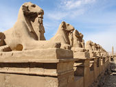 Sculptures at Precinct of Amun-Re in Egypt — Stock Photo