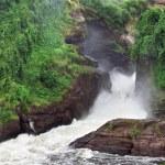Murchison Falls in Uganda — Stock Photo