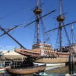 Stock Photo: Mayflower 2nd