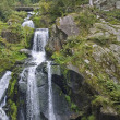 Idyllic Triberg Waterfalls — Stock Photo