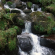 Idyllic Triberg Waterfalls - Foto Stock