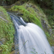 Idyllic Triberg Waterfalls — Stock Photo #7250720