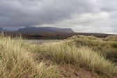 Overgrown dunes and dramatic sky — Stock Photo
