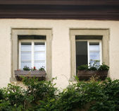 House facade detail with two old windows — Stock Photo