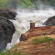 Murchison Falls in Africa — Stock Photo #7281823
