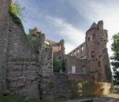 Wertheim Castle at summer time — Stock Photo