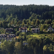 Black Forest scenery with houses — Stock Photo #7297751