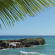 Dominican Republic coastal scenery - Stock Photo