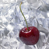 Red cherry on ice — Stock Photo