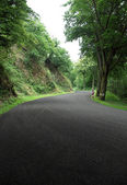 Ardennes road at summer time — Stock Photo
