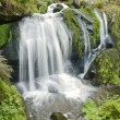 Stock Photo: Idyllic Triberg Waterfalls