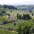 Tuscany landscape — Stock Photo #7314811