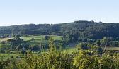 Sunny landscape around Emmendingen — Stock Photo