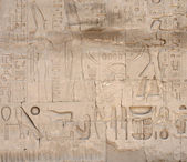 Relief at Precinct of Amun-Re in Egypt — Stock Photo