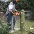 Lumberman at work — Stock Photo #7345200
