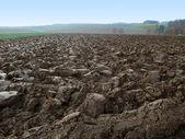 在农村的氛围中犁过的田野 — 图库照片