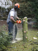 Lumberman at work — Stock Photo