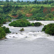 River Nile scenery near Jinja — Stock Photo