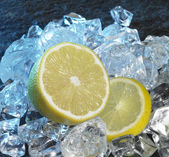 Lemons and ice cubes — Stock Photo
