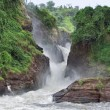 Idyllic Murchison Falls — Stock Photo #7372052