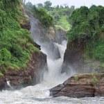 Idyllic Murchison Falls — Stock Photo