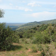 Stock Photo: Great Rift Valley