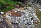 Hot spring at the Azores — Stock Photo