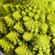 Abstract romanesco cauliflower — Stock Photo