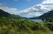 Loch lomond güneşli bir ortam içinde — Stok fotoğraf