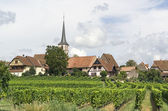 Mittelbergheim in France — Stock Photo