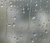 Rainy detail in blurry back — Stock Photo