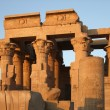 Stock Photo: Kom Ombo temple detail