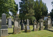 Jewish graveyard in sunny ambiance — Foto Stock